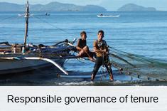 Responsible governance of tenure