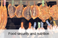 Food security and nutrition in small-scale fisheries