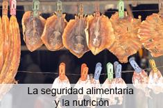 La seguridad alimentaria y la nutrición
