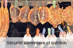 Sécurité alimentaire et nutrition