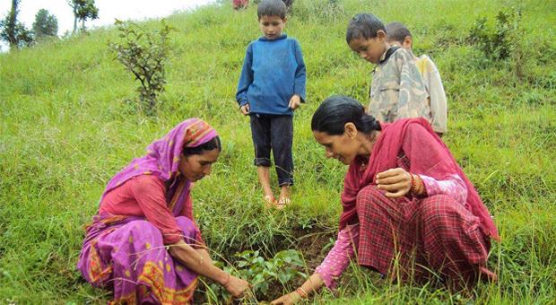 Resultado de imagen para agricultura familiar