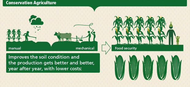 top 5 need to knows about conservation agriculture