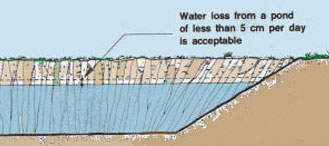 you should aim to reduce seepage to a point at which water losses become at least tolerable for example less than 5 cm per day