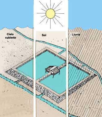 2 mejora de la calidad de agua en los estanques for Fertilizacion de estanques piscicolas