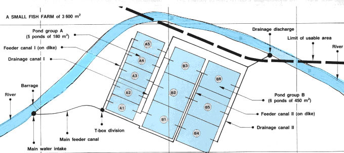 12 detailed planning for fish farm construction for Design of farm pond pdf