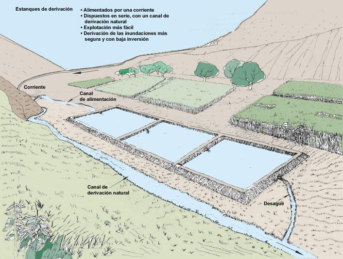 1 informaci n b sica for Fertilizacion de estanques piscicolas