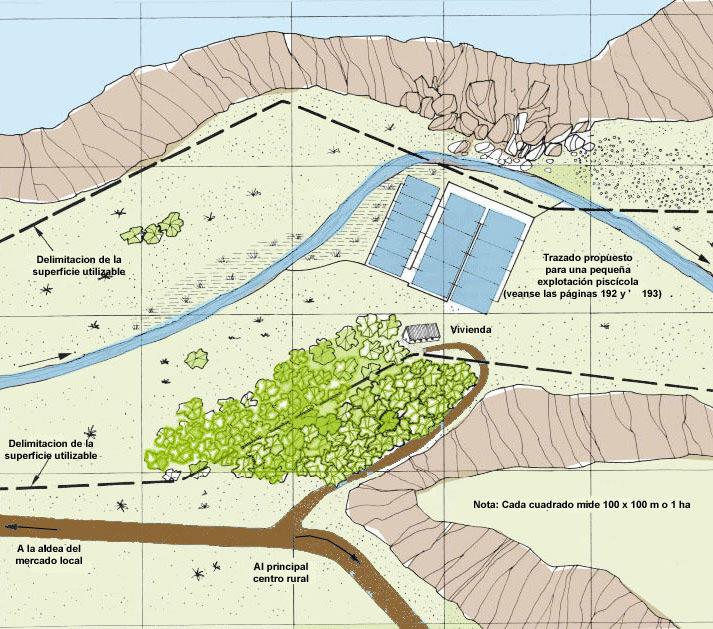 12 planificaci n detallada para la construccion de una for Construccion de estanques circulares para tilapia