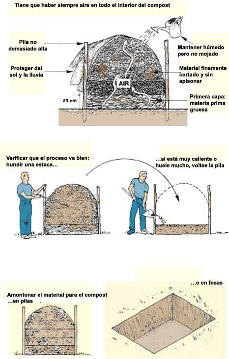 6 fertilizaci n de los estanques pisc colas for Estanque para agua caliente