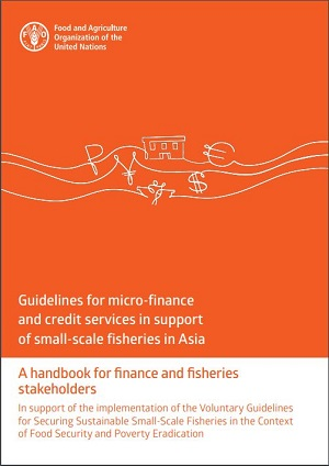 New Release: Guidelines for micro-finance and credit services in support of