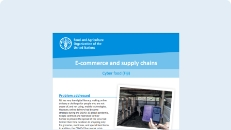 Cover of the E-commerce/supply chains publication
