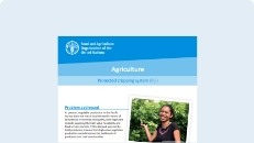 Cover of the Agriculture: Protected cropping system publication