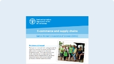 Cover of the E-commerce and supply chains: SWAG publication