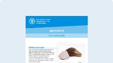 Agriculture: Taro breeding (Fiji)