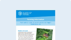 Agriculture, content and tools (Fiji, Papua New Guinea, Samoa, Solomon Islands)