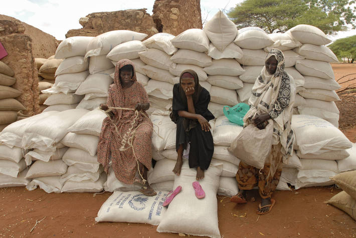 FAO - News Article: Adverse weather pushes food prices up in