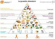 blank food pyramid template