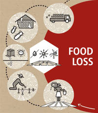 Food loss | Technical Platform on the Measurement and
