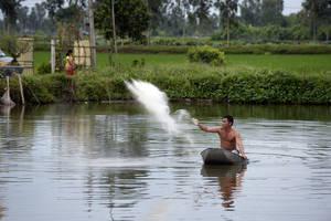 Photo: ©FAO/AFP/Hoang Dinh Nam