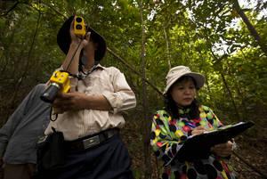 Google и ФАО стремятся вступить в новую эру экологической грамотности для всех