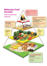 essay about food guide pyramid Learn how to use the healthy eating plate as a guide just as the healthy eating pyramid rectifies the mistakes of the usda's food guide pyramid, the healthy.