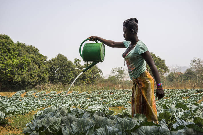 Image result wey dey for women in agric