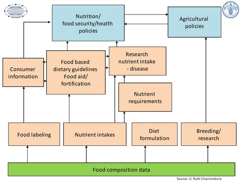 INFOODS: Food composition challenges