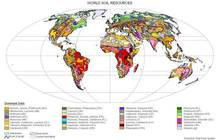 Soil Maps and Databases | FAO SOILS PORTAL | Food and Agriculture