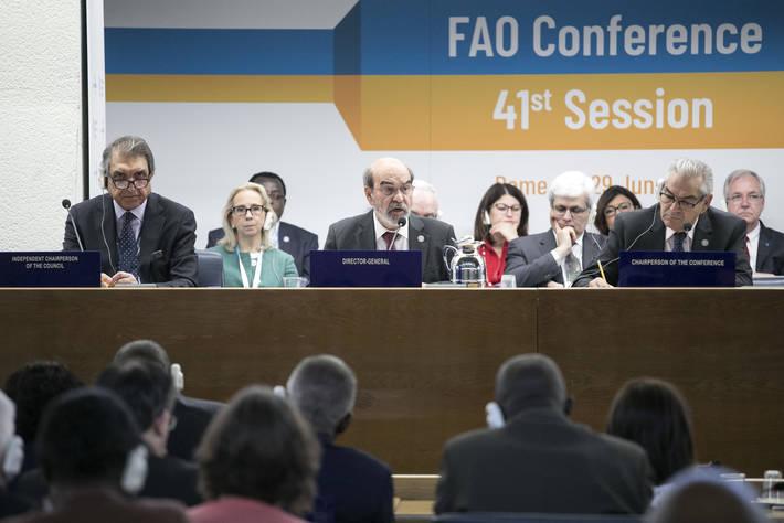 Photo: © FAO / Giuseppe Carotenuto