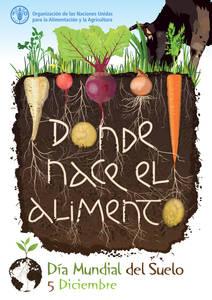Sobre El Dia Dia Mundial Del Suelo Organizacion De Las Naciones Unidas Para La Alimentacion Y La Agricultura