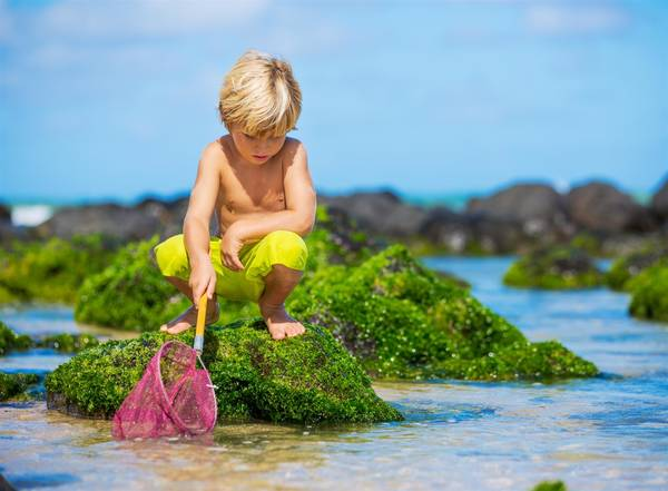 How to help kids save our oceans and be environmental heroes