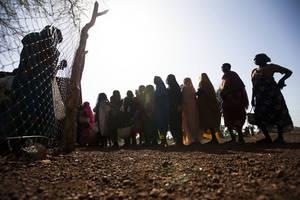 Photo: ©FAO/UNHCR Gonzalez Farr
