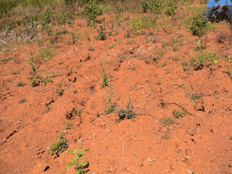 how to stop land degradation