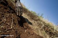 Definiciones | Portal de Suelos de la FAO | Organización de las Naciones  Unidas para la Alimentación y la Agricultura