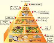 The Bangladeshi food guide. Reproduced with permission.