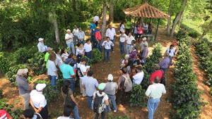 Foto: ©Mecanismo de Bosques y Fincas