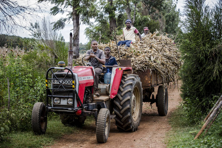 FAO - News Article: Poorest countries face growing burden from the