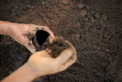 2015 国際土壌年 | FAO駐日連絡...