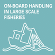 On-board Handling in Large Scale Fisheries