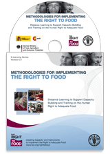 Methodologies for Implementing the Right to Food