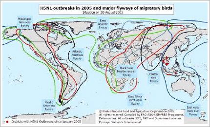 発生 鳥 状況 インフルエンザ