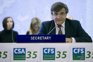 Photos from the 35th Session of CFS