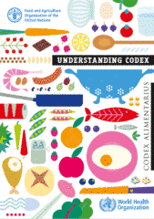 Understanding Codex