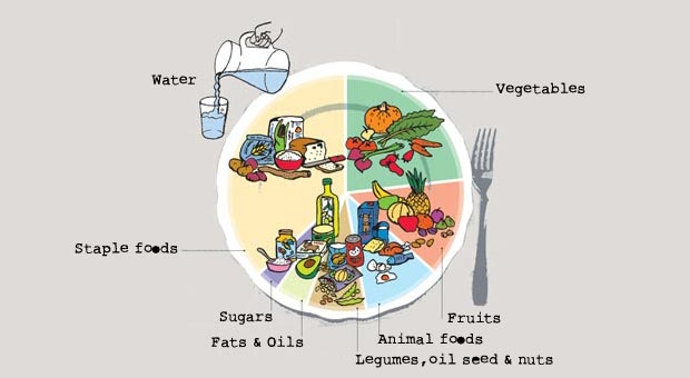 Que comer para llevar una dieta saludable