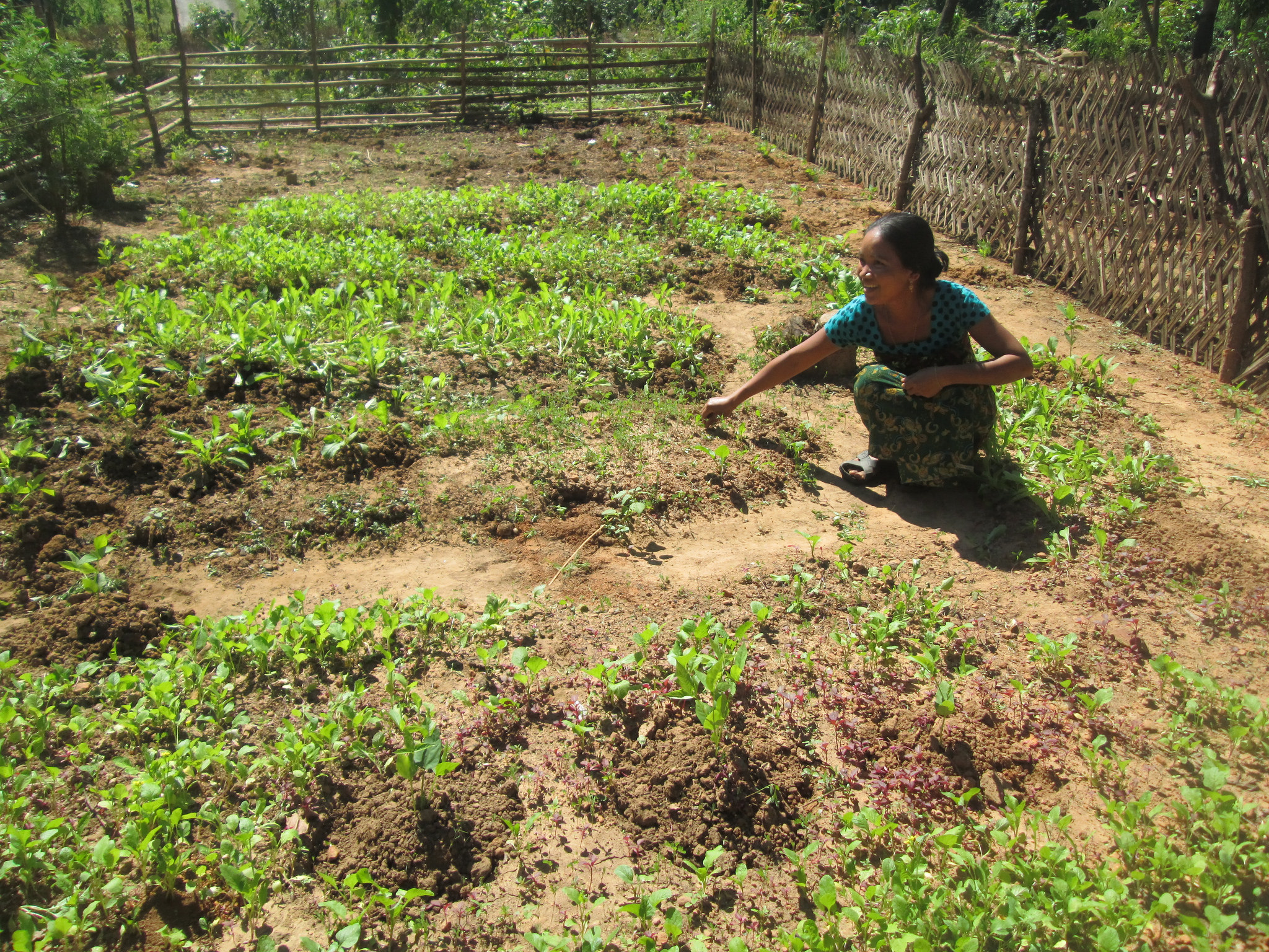 Achieving food and nutrition security in remote areas of the Chittagong Hill Tracts in Bangladesh