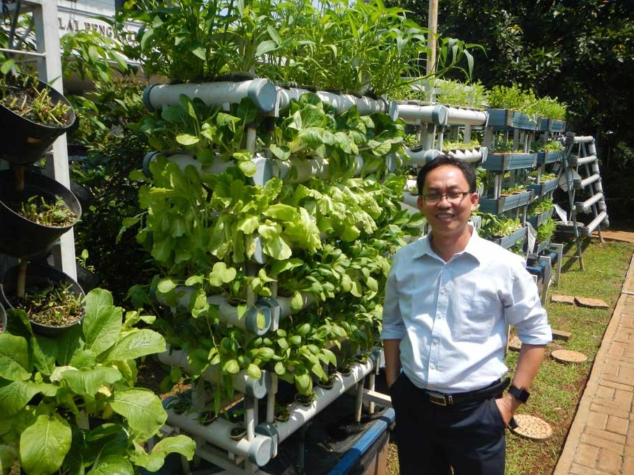 Advancing aquaponics development in Indonesia