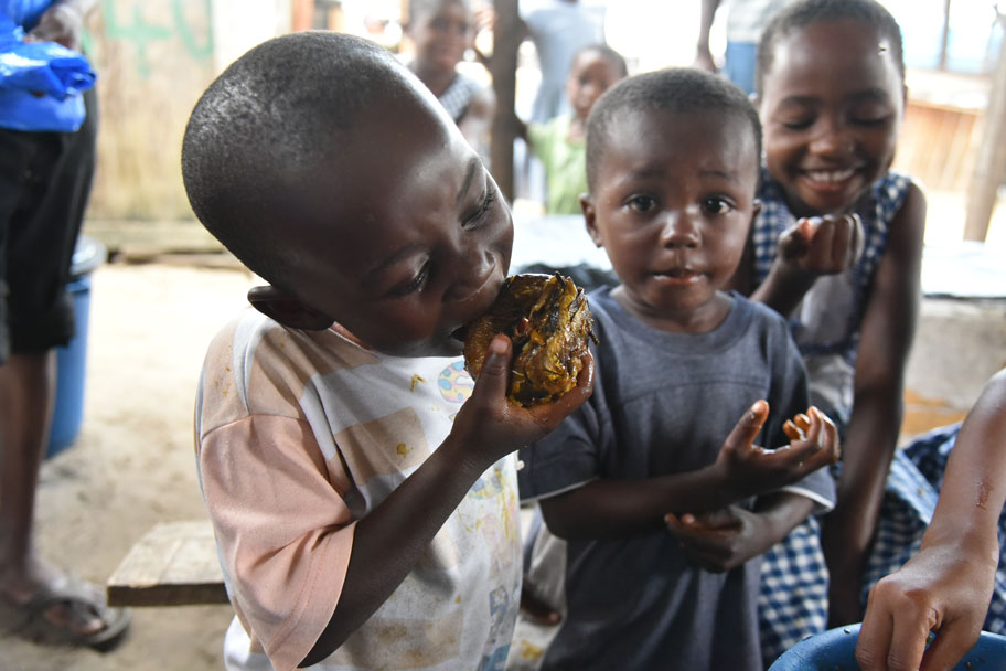 recipe book promotes nutritional value of fish in africa