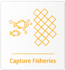 Capture Fisheries