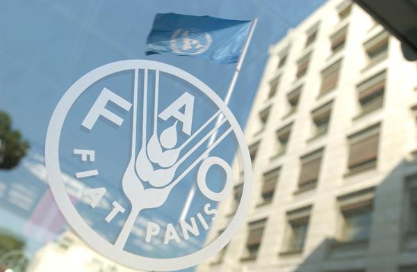 Sede da FAO, em Roma. Foto: FAO