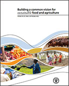 Building a common vision for sustainable food and agriculture