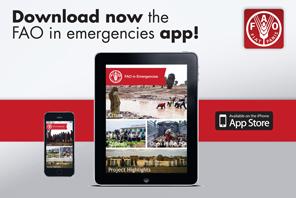Cyclone Idai : FAO in Emergencies